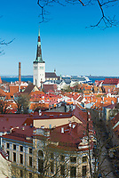 Old town rooftops and Oleviste church in Tallinn, Estonia