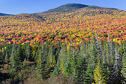 Autumn foliage along Route 302 in the White Mountains, New Hampshire USA.