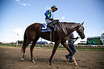 LOUISVILLE, KY, Veritcal Oak (Giant Oak x Vertical Vision) ridden by Ricardo Santana Jr, trained by Steven M Asmussen and owned by J Kirk and Judy Robison wins the 10th running of the Open Mind Stakes on 9/15/2018 (Photo by Delaney Witbrod/Eclipse Sportswire/Getty Images)