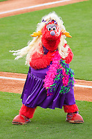 """Winston-Salem Dash mascot """"Bolt"""" entertains fans between innings at BB&T Ballpark on May 7, 2011 in Winston-Salem, North Carolina.   Photo by Brian Westerholt / Four Seam Images"""