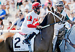 ARLINGTON HEIGHTS, IL - AUGUST 13: Al's Gal #2, ridden by Corey Lanerie, during the post parade before the Beverly D. Stakes at Arlington International Racecourse on August 13, 2016 in Arlington Heights, Illinois. (Photo by Jon Durr/Eclipse Sportswire/Getty Images)