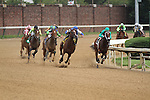 Inner Truth with Miguel Mena (blue cap) and Elusive Sabu with Calvin Borel jockey for position at the top of the stretch in the 5th race at Churchill Downs. 05.21.2011