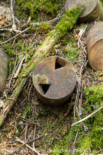 Artifacts at Camp 24B of the East Branch & Lincoln Railroad in the Cedar Brook drainage of the Pemigewasset Wilderness in Lincoln, New Hampshire USA. The East Branch & Lincoln Railroad was a logging railroad that operated from 1893-1948. And this camp was established during the Parker-Young Company logging era.