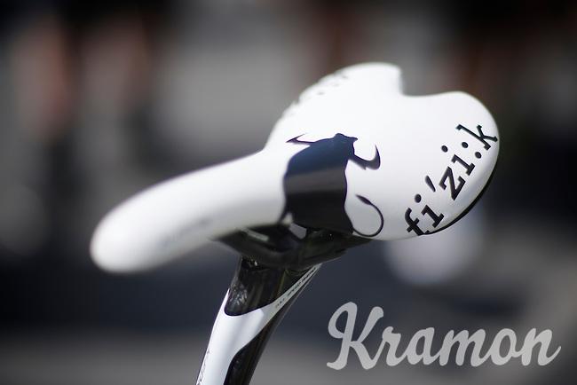 Peter Sagans saddle's got a bull to spur him on<br />  <br /> Tour de France 2013<br /> stage 13: Tours to Saint-Amand-Montrond, 173km
