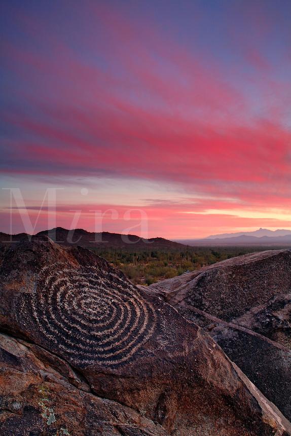 Rock Art in Saguaro National Park, Tucson Mountain District or Saguaro West, Tucson, Arizona
