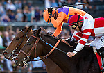 ARCADIA, CA - NOV 04: Beholder #8, ridden by Gary Stevens, wins the Longines Breeders' Cup Distaff at Santa Anita Park on November 4, 2016 in Arcadia, California. (Photo by Samantha Bussanich/Eclipse Sportswire/Getty Images)
