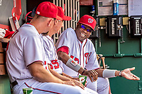 15 August 2017: Washington Nationals Manager Dusty Baker chats with his coaches in the dugout prior to a game against the Los Angeles Angels at Nationals Park in Washington, DC. The Nationals defeated the Angels 3-1 in the first game of their 2-game series. Mandatory Credit: Ed Wolfstein Photo *** RAW (NEF) Image File Available ***