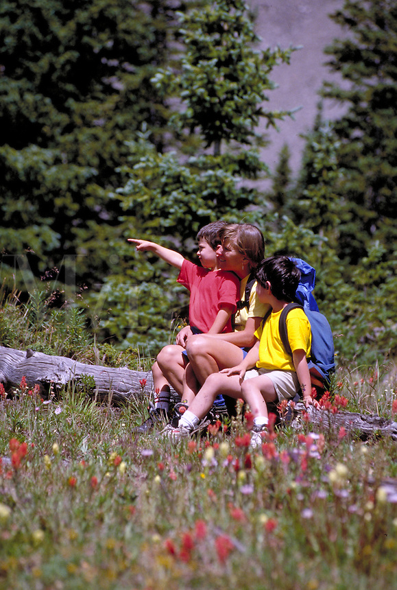 Mother and sons hiking , Summit County, CO. Summit County, Colorado.