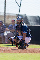 San Diego Padres catcher Jonny Homza (7) during an Instructional League game against the Texas Rangers on September 20, 2017 at Peoria Sports Complex in Peoria, Arizona. (Zachary Lucy/Four Seam Images)