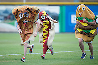 A slice of pizza, a hotdog, and a hamburger compete in a race between innings of the Appalachian League game between the Bluefield Blue Jays and the Burlington Royals at Burlington Athletic Stadium on June 27, 2016 in Burlington, North Carolina.  The Royals defeated the Blue Jays 9-4.  (Brian Westerholt/Four Seam Images)