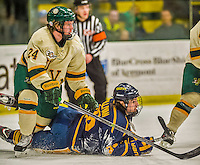 29 December 2013:  University of Vermont Catamount Defenseman Chris Muscoby (24), a Freshman from Airdrie, Alberta, checks Canisius College Golden Griffins forward Patrick Sullivan, a Senior from Derby, NY, in the first period at Gutterson Fieldhouse in Burlington, Vermont. The Catamounts defeated the Golden Griffins 6-2 in the 2013 Sheraton/TD Bank Catamount Cup NCAA Hockey Tournament. Mandatory Credit: Ed Wolfstein Photo *** RAW (NEF) Image File Available ***