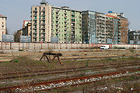 Milano, periferia sud. Ex scalo merci ferroviario di porta romana in disuso --- Milan, south periphery. Former freight railway yard of Milan Romana Gate now in disuse