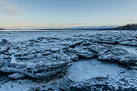 Pan ice on the mudlats along Cook Inlet at Anchorage's Earthquake Park.
