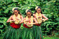 Three Hula Dancers in ti leaf skirts and yellow plumeria leis performing an Auana style hula