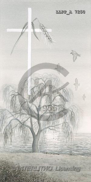 Maira, SYMPATHY, photos, cross, tree(LLPPA7250,#T#) Beileid, condolación