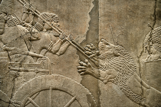Assyrian relief sculpture panel of Ashurnasirpal lion hunting.  From Nineveh  North Palace, Iraq,  668-627 B.C.  British Museum Assyrian  Archaeological exhibit no ME 124867
