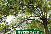 Large Oak Tree's in the Myers Park neighborhood in Charlotte, NC. Myers Park is one of the premier neighborhoods in North America and known for its large canopy of trees.