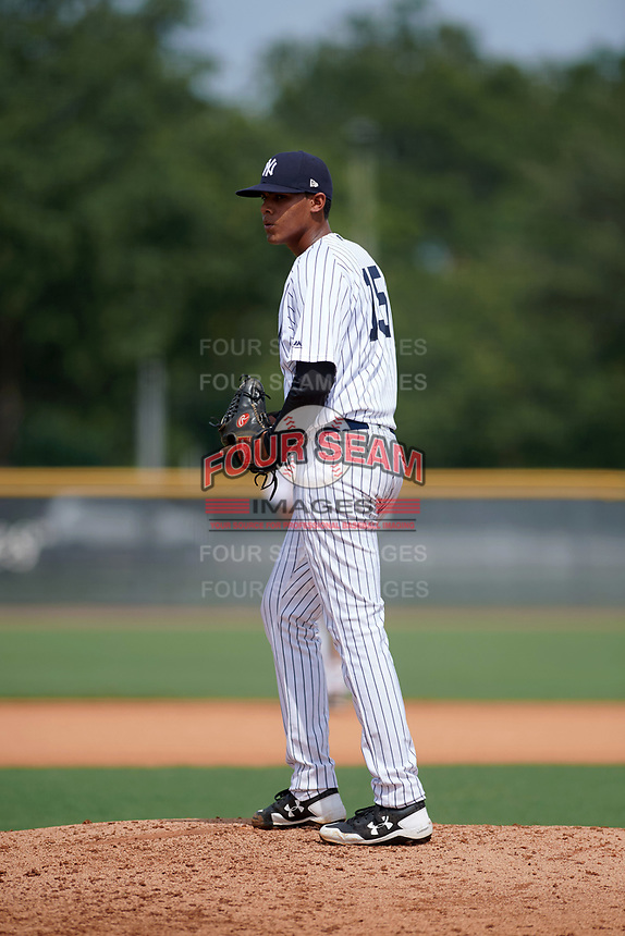 GCL Yankees East relief pitcher Luis Rijo (15) gets ready to deliver a pitch during the first game of a doubleheader against the GCL Blue Jays on July 24, 2017 at the Yankees Minor League Complex in Tampa, Florida.  GCL Blue Jays defeated the GCL Yankees East 6-3 in a game that originally started on July 8th.  (Mike Janes/Four Seam Images)