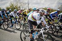 racefood for Alejandro Valverde (ESP/Movistar)<br /> <br /> 74th Dwars door Vlaanderen 2019 (1.UWT)<br /> One day race from Roeselare to Waregem (BEL/183km)<br /> <br /> ©kramon