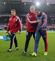 Swansea manager Alan Curtis and Jefferson Montero during the Barclays Premier League match between Swansea City and West Bromwich Albion played at the Liberty Stadium, Swansea on December 26 2015