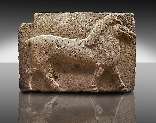 Picture of Phrygian releif sculpture Orthostat of a horse from Kucukevier, Turkey.  7th century BC. Note the stylised leg muscles. An Ankara Museum of Anatolian Civilizations exhibit.