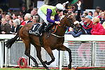 Horse Racing - The Curragh Racecourse - The Darley Irish Oaks. .Dunboyne Express ridden by Declan McDonagh and trained by Kevin Prendergast win the Group 3 Jebel Ali Stables & Racecourse Anglesey Stakes at the Curragh Racecourse.