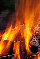 Campfire<br />