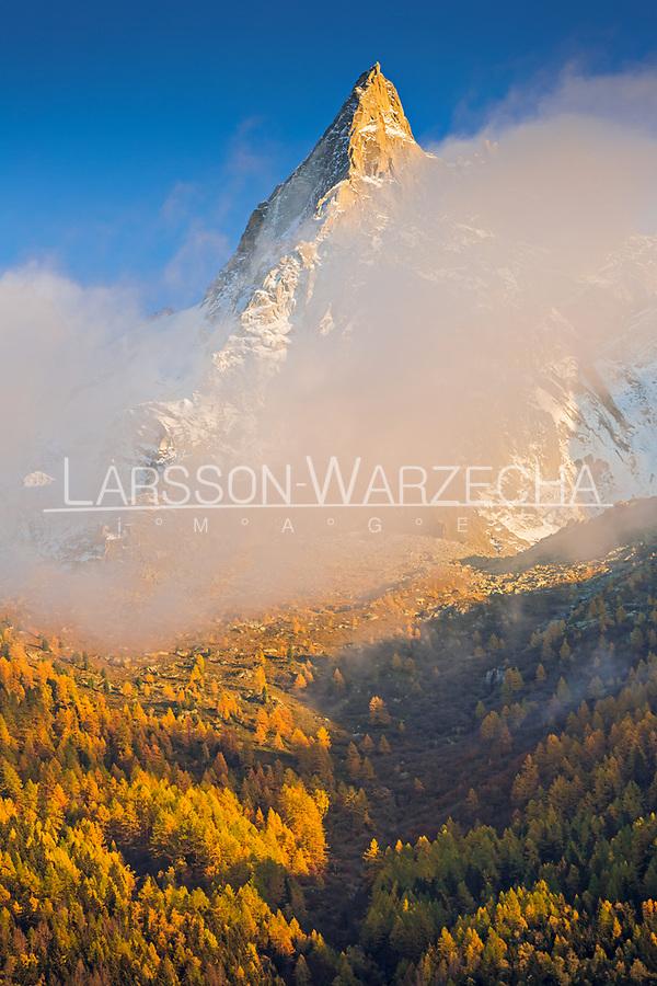 Autumn colours on the Aiguilles de Chamonix at sunset, Chamonix, France