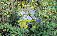 Pictured: Specialist Search Unit officers at the scene where the body of 15 year old Rebecca Aylward was discovered. Monday 25 October 2010<br /> Re: South Wales Police are investigating the murder of 15 year old Rebecca Aylward from Maesteg in south Wales. Her body was discovered in woodlands outside Aberkenfig near Bridgend. Two fifteen year old men have been arrested.