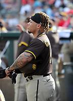 Luis Campusano - San Diego Padres 2020 spring training (Bill Mitchell)