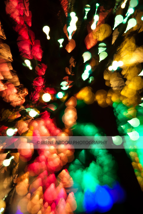At a holiday light display (Brookside Gardens Garden of Light in Wheaton, Maryland), patterns of light are created through purposeful de-focus and focus blur technique.