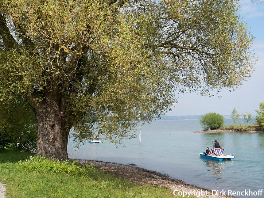 Bodensee beim Seeburgpark Kreuzlingen, Kanton Thurgau , Schweiz<br /> Bodensee near Seeburgpark Kreuzlingen, Canton Thurgau, Switzerland