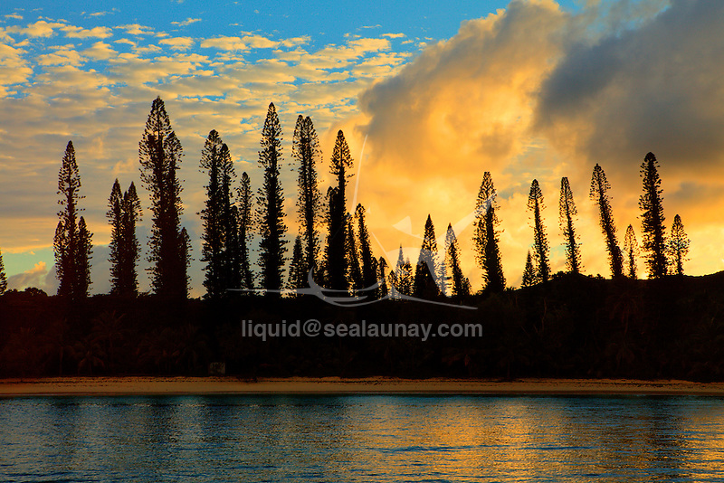 """Sea view from Kuto Bay on the Isle of pines, New Caledonia.The Isle of Pines (French: Île des Pins; Kanak name: Kunyié) is an island located in the Pacific Ocean, in the archipelago of New Caledonia, an overseas territory of France. The island is part of the commune (municipality) of L'Île-des-Pins, in the South Province of New Caledonia. The Isle of Pines is often nicknamed l'île la plus proche du paradis (""""the closest island to Paradise"""") and is famous for snorkeling and scuba diving in and around its colorful lagoon. Many species of tropical fish and corals can be seen in the transparent water..The island is located around [show location on an interactive map] 22°37?S 167°29?E / 22.617°S 167.483°E / -22.617; 167.483Coordinates: 22°37?S 167°29?E / 22.617°S 167.483°E / -22.617; 167.483 and measures 15 km (9 miles) by 13 km (8 miles). It lies southeast of Grande Terre, New Caledonia's main island and is approximately 100 kilometres south-east of the capital Noumea. There is one airport (code ILP) with a 1,097-meter (3,600 ft) runway. The Isle of Pines is surrounded by the New Caledonia Barrier Reef..The inhabitants of the island are mainly native Melanesian Kanaks and the population is approximately 2,000 (estimated 2006) (1989 population 1,465)..The island is rich with animal life and is home to many unique creatures such as the Crested Gecko Rhacodactylus ciliatus and the world's largest gecko Rhacodactylus leachianus..The pic Nga is the island's highest point, at 262 meters (860 ft) elevation..The island was first discovered by Captain James Cook in 1774 on his second voyage to New Zealand. Captain Cook gave the island its name after seeing the tall native pines (Araucaria columnaris). It is said he never actually disembarked onto the island but as he saw signs of inhabitance (smoke) assumed it was inhabited. In the 1840s both Protestant and Catholic missionaries arrived, along with merchants seeking sandalwood..The French took possession of the island in 1853 at"""