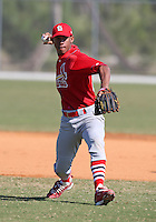 March 19, 2010:  Shortstop Domnit Bolivar of the St. Louis Cardinals organization during Spring Training at the Roger Dean Stadium Complex in Jupiter, FL.  Photo By Mike Janes/Four Seam Images