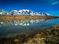 Art in Nature 9601-0102 - Mount Nebo is reflected in the water of the Mona Reservior. Nephi, Utah.