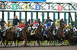 30 January 2010: Horses out of the gate during the Sunshine Millions  Distaff Stakes at Gulfstream Park in Hallandale Beach, FL.