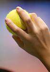 25.10.2010, Stadthalle, Wien, AUT, ATP, Bank Austria Tennis Trophy, Marius Copil (ROU) vs Grega Zemlja (SLO), im Bild Tennis Feature, EXPA Pictures 2010, PhotoCredit: EXPA/ S. Trimmel