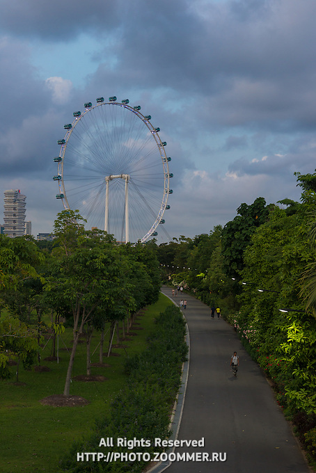 Singapore Flyer Ferris Wheel In The Evening, Singapore