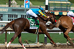 ARCADIA, CA. SEPTEMBER 30:  #5 Lemoona, ridden by Flavien Prat, is hot on the heels of #1 Shenandoah Queen, ridden by Tyler Baze, in the stretch of the Zenyatta Stakes (Grade l) on September 30, 2018, at Santa Anita Park in Arcadia, CA.(Photo by Casey Phillips/Eclipse Sportswire/CSM)