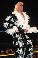 Ric Flair 1993<br /> Photo By John Barrett/PHOTOlink