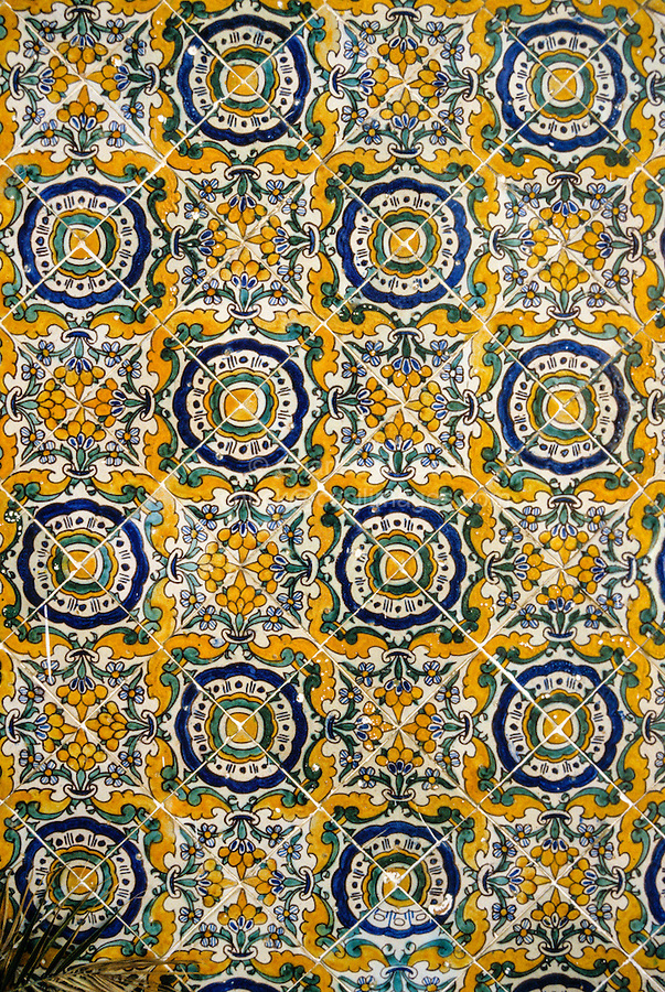 Ceramics, Tunis Medina, Tunisia.  Tiles on Wall in the Dar Lasram, a Home Restored in the Late 20th. Century.  Flecks of White Paint have been Inadvertently Splattered on the Tiles.