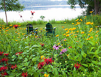 Chairs overlooking lake in Connecticut meadow garden with native wildflowers; Larry Weiner Design