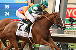 """DEL MAR, CA  JULY 30: Del Mar Turf Club in Del Mar, CA on July 30, 2016. (Photo by Casey Phillips/Eclipse Sportswire/Getty Images)DEL MAR, CA  JULY 30: #2 Stellar Wind with Victor Espinoza beat Beholder and Gary Stevens in the Clement L. Hirsch Stakes (Gl) """"Win and You're in Breeders' Cup Distaff Division"""" at Del Mar Turf Club in Del Mar, CA on July 30, 2016. (Photo by Casey Phillips/Eclipse Sportswire/Getty Images)DEL MAR, CA  JULY 30: #2 Stellar Wind with Victor Espinoza beat Beholder and Gary Stevens in the Clement L. Hirsch Stakes (Gl) """"Win and You're in Breeders' Cup Distaff Division"""" at Del Mar Turf Club in Del Mar, CA on July 30, 2016. (Photo by Casey Phillips/Eclipse Sportswire/Getty Images)"""