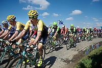 Robert Wagner (DEU/LottoNL-Jumbo) & Sep Vanmarcke (BEL/LottoNL-Jumbo)<br /> <br /> 99th Ronde van Vlaanderen 2015