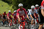The peloton including European Champion Elia Viviani (ITA) Cofidis climb the 1st Col during Stage 3 of the Route d'Occitanie 2020, running 163.5km from Saint-Gaudens to Col de Beyrède, France. 3rd August 2020. <br /> Picture: Colin Flockton | Cyclefile<br /> <br /> All photos usage must carry mandatory copyright credit (© Cyclefile | Colin Flockton)