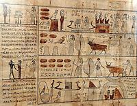 ...ITALIA - Torino - Museo Egizio  .ll libro dei Morti - Papiro