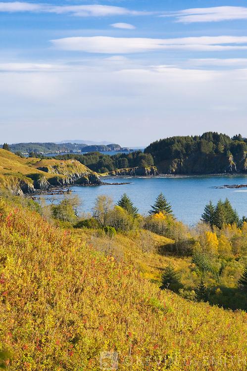 Hills overlooking Womens Bay, fall, Kodiak Island, Alaska, USA.