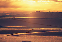 The trans Alaska oil pipeline stretches across the snow covered tundra of Alaska's Arctic coastal plains, Brooks Range, Arctic, Alaska