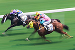 (From left) Horse Laughing Lord #12 ridden by Joao Moreira, horse Rock The Tree #5 ridden by Matthew Chadwick and horse Ambitious Speedy #2 ridden by Nash Rawiller compete  during the race 4 of HKJC Horse Racing 2017-18 at the Sha Tin Racecourse on 16 September 2017 in Hong Kong, China. Photo by Victor Fraile / Power Sport Images