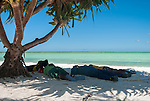 Local i-Kiribati taking a siesta in the shade of a tree to escape the the hot midday sun
